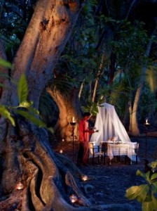cena alle maldive nella foresta