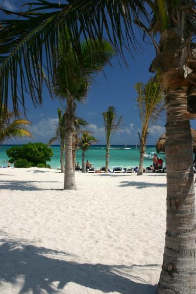 spiaggia con le palme a Cancun in Messico, ilViaggio.it immagini