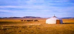"""Mongolia: il volo dell""""aquila"""