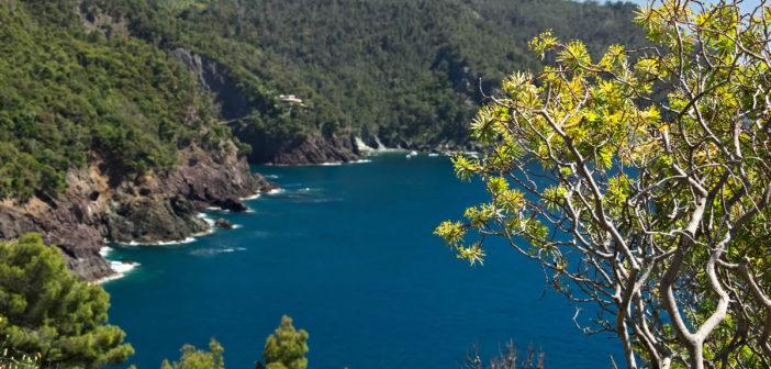 Framura cinque terre : vacanza natura